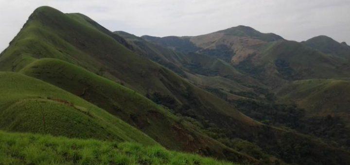 ニンバ山厳正自然保護区