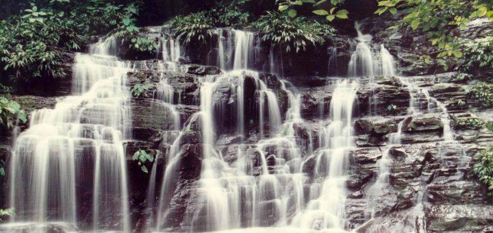 ロス・カティオス国立公園
