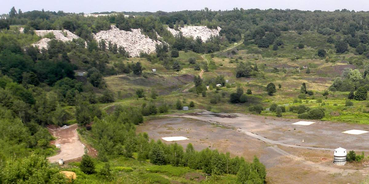 メッセル採掘場の画像 p1_10