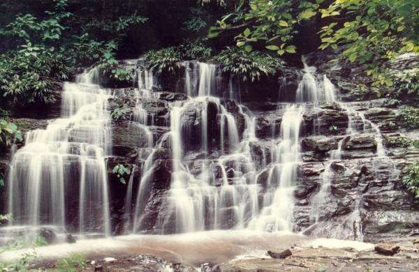 ロス・カティオス国立公園の画像 p1_3