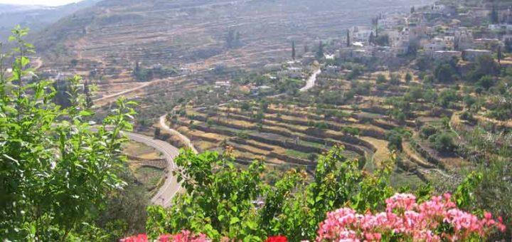 オリーブとワインの地パレスチナ – エルサレム地方南部バティールの文化的景観