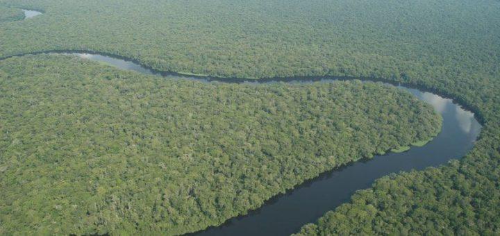 サロンガ国立公園