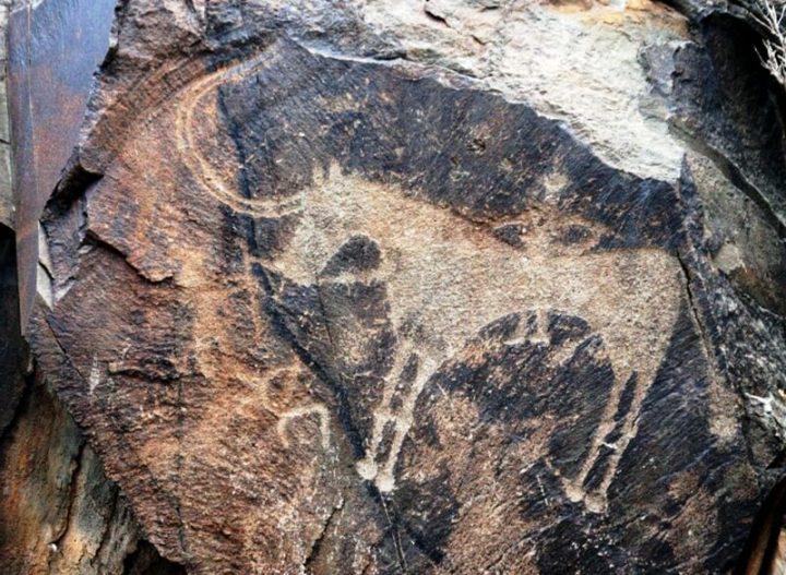 タムガリの考古的景観にある岩絵...