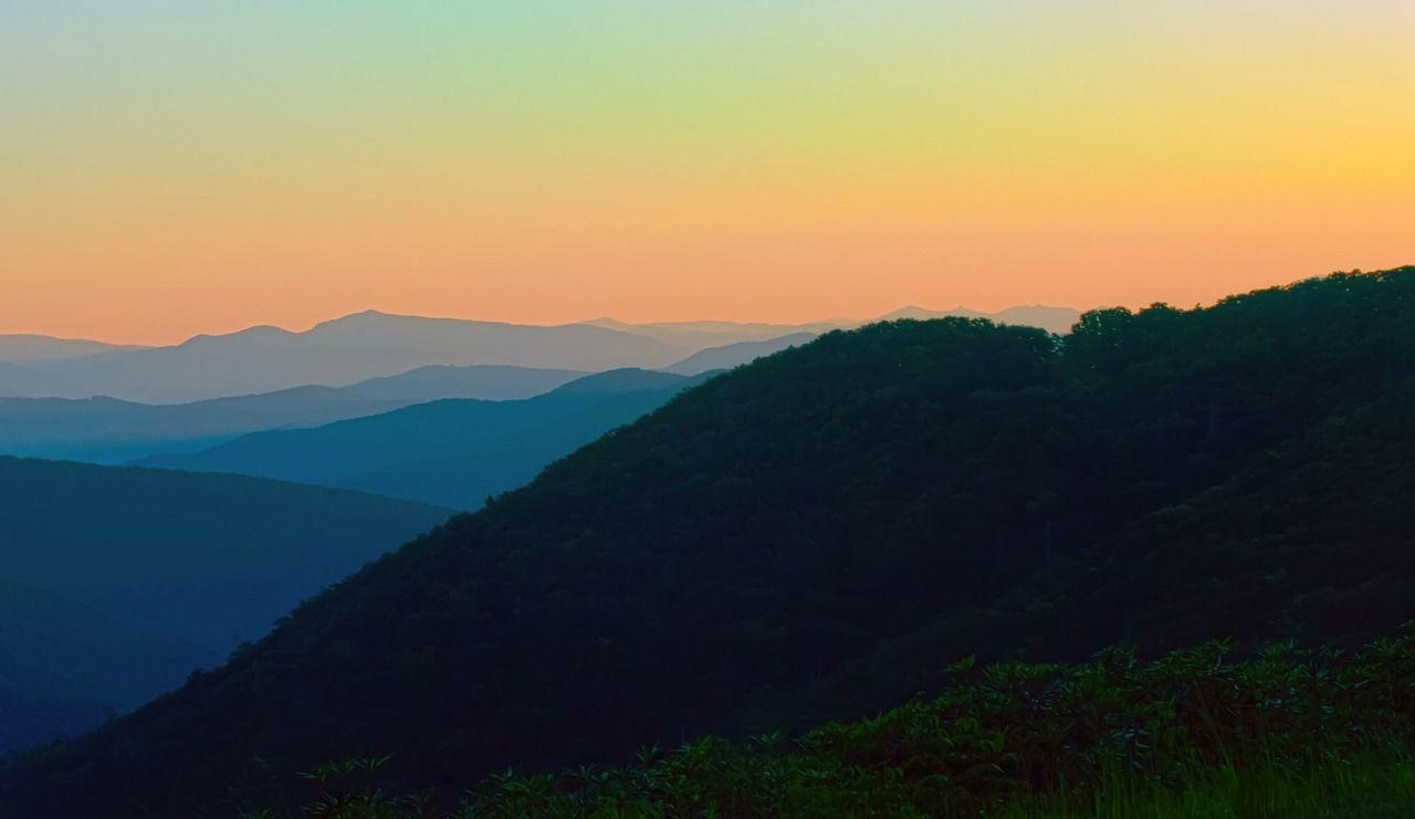 エバーグレーズ国立公園の画像 p1_22