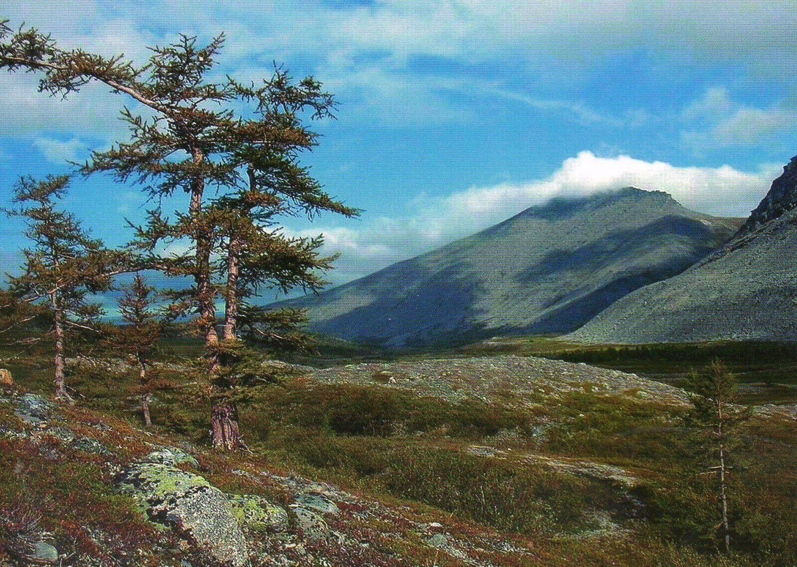 カムチャツカの火山群の画像 p1_27