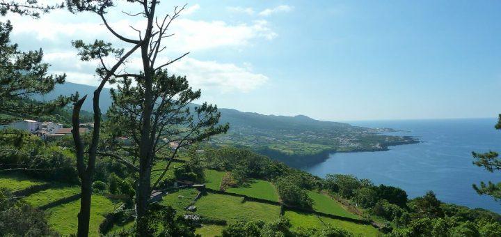 ピコ島のブドウ畑文化の景観