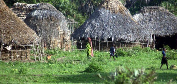 ミジケンダのカヤの聖なる森林群