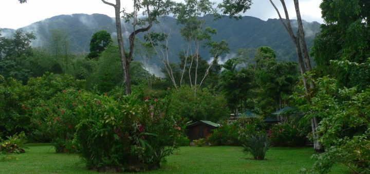 リオ・プラタノ生物圏保護区