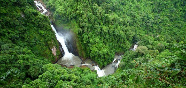 ドンパヤーイェン-カオヤイ森林地帯