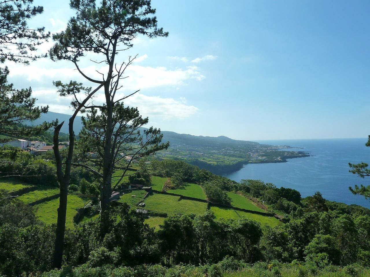ピコ島の画像 p1_3