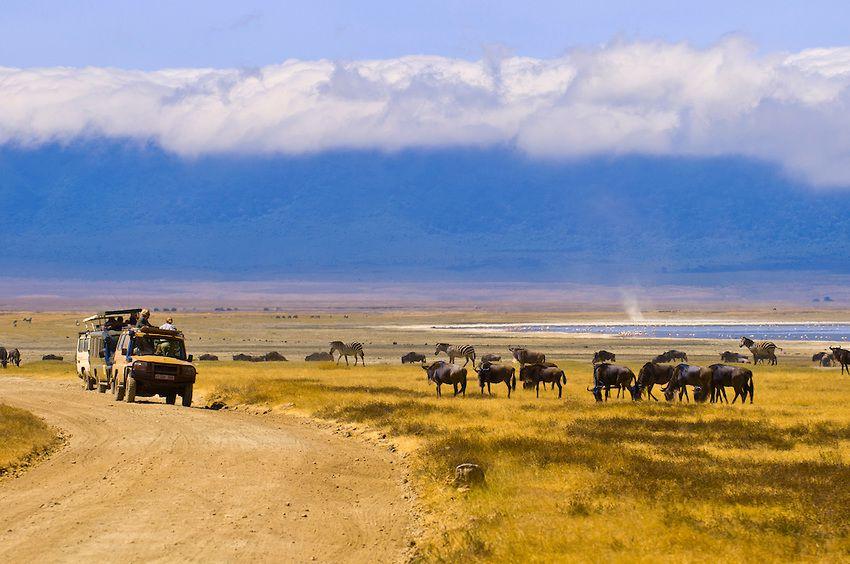 ンゴロンゴロ保全地域の画像 p1_28
