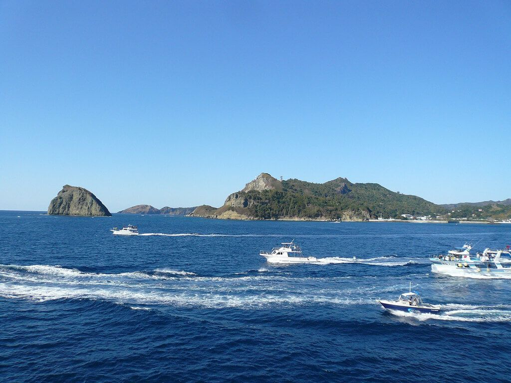 小笠原諸島の画像 p1_36