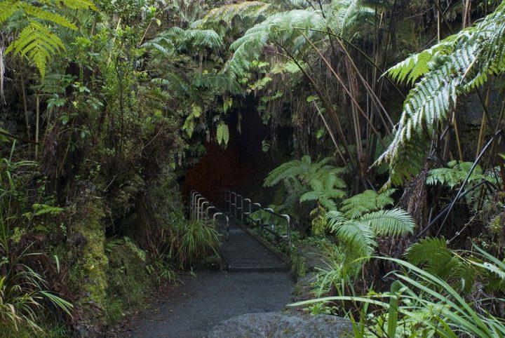 【世界遺産】サーストン・ラバ・チューブ|ハワイ火山国立公園