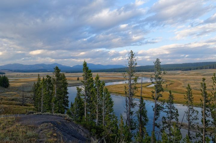 photo credit: Yellowstone Lamar Valley via photopin (license)