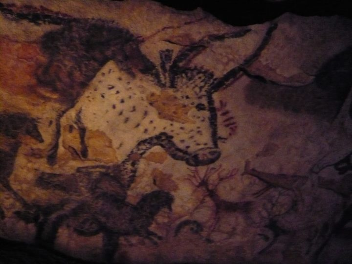photo credit: Lascaux cave painting via photopin (license)