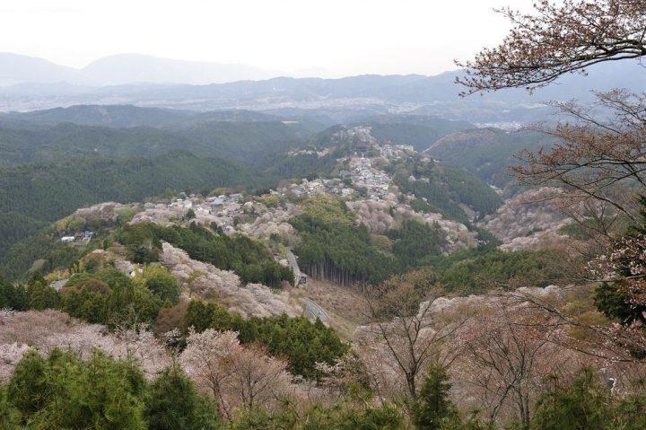 【世界遺産】紀伊山地の霊場(高野山、熊野三山、吉野・大峯)