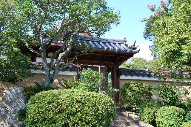 唐招提寺|古都奈良の文化財 (3)