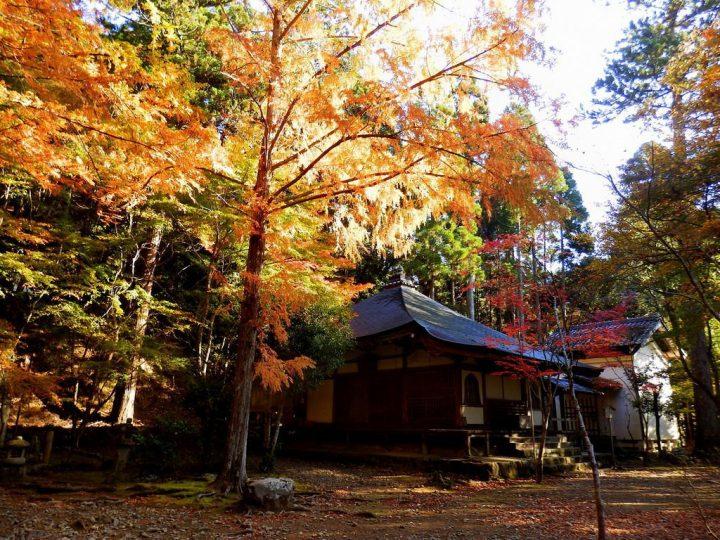 【世界遺産】古都京都の文化財