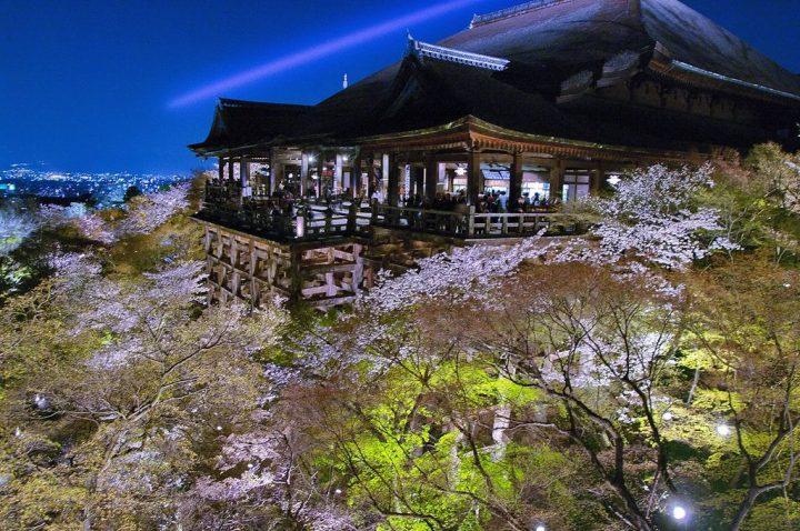 古都京都の文化財の画像 p1_14