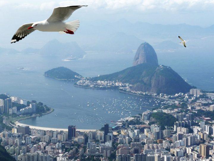 【世界遺産】グアナバラ湾|リオデジャネイロ:山と海との間のカリオカの景観群