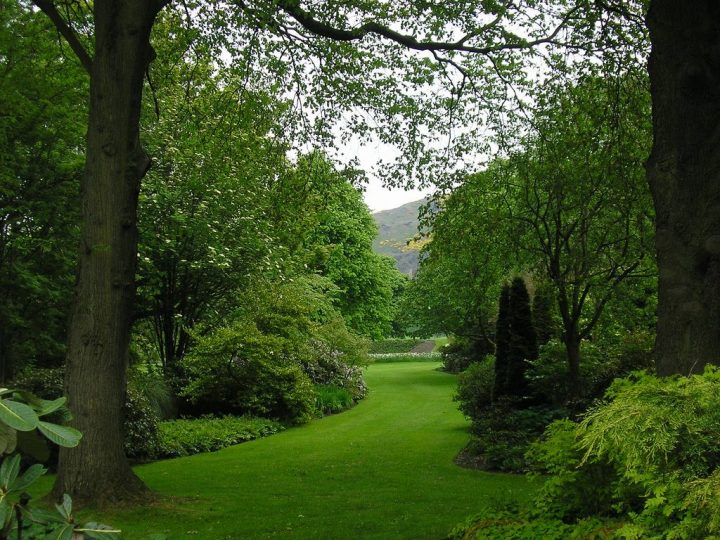 photo credit: Edinburgh, Scotland via photopin (license)