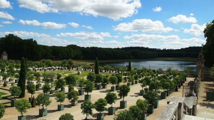 ヴェルサイユの庭園|ヴェルサイユの宮殿と庭園 (13)