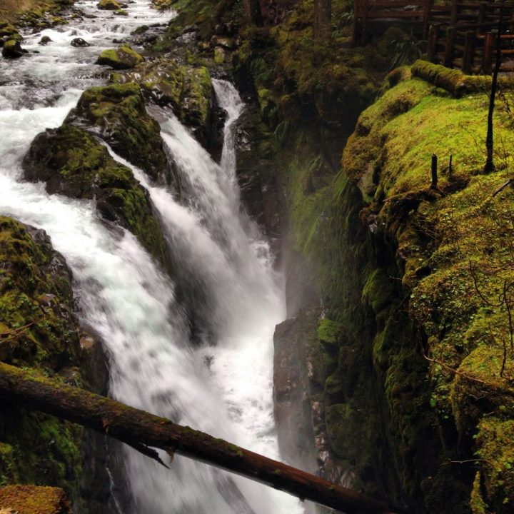 photo credit: Sol Duc Falls via photopin (license)