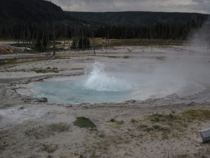 photo credit: Spouter Geyser erupting (5 PM on, 5 August 2013) 17 via photopin (license)