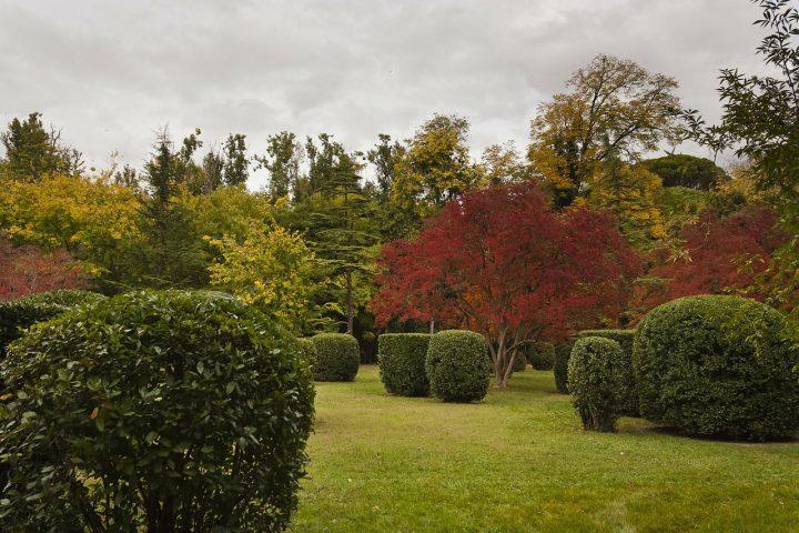 アランフェス 王子の庭