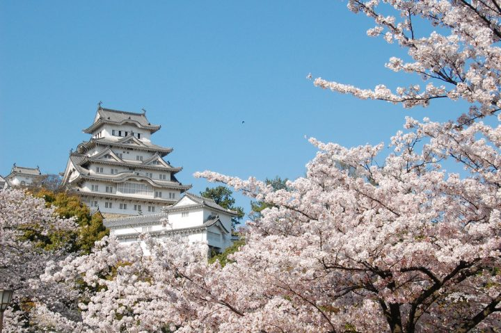 photo credit: Himeji Castle Surrounded via photopin (license)