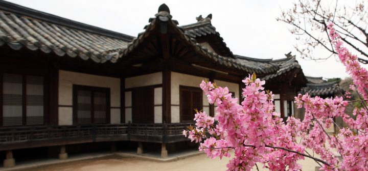 photo credit: Spring_in_Changdeokgung_Palace_2015_03 via photopin (license)