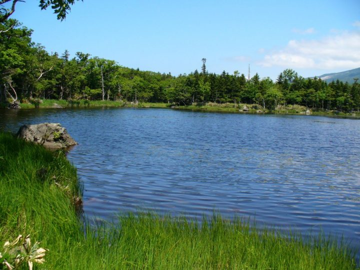 photo credit: Second Lake(Shiretoko Five Lakes) via photopin (license)