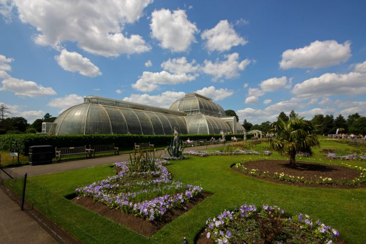 photo credit: Palm House, Kew Gardens via photopin (license)