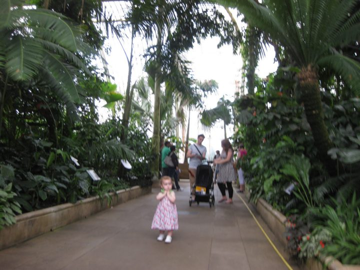 【世界遺産】キュー王立植物園