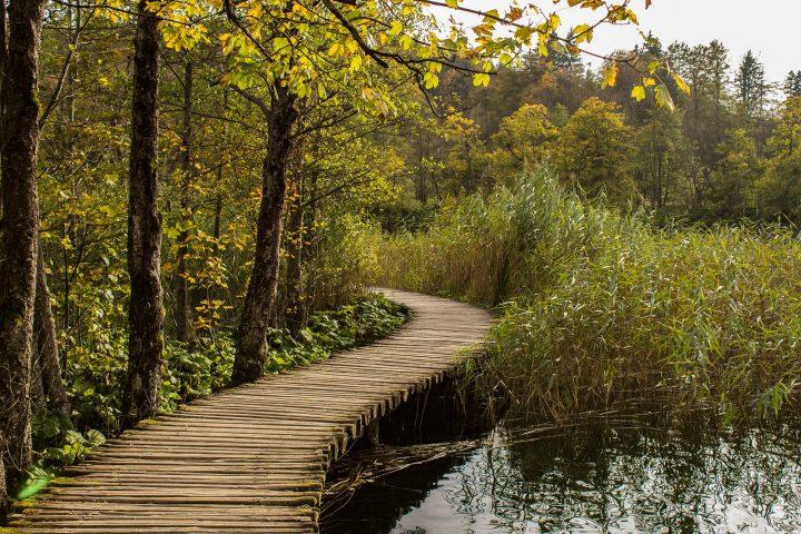 【世界遺産】下湖群|プリトヴィッツェ湖群国立公園