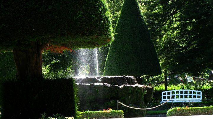 ホーフ庭園とホーフ教会|ヴュルツブルク司教館、その庭園群と広場