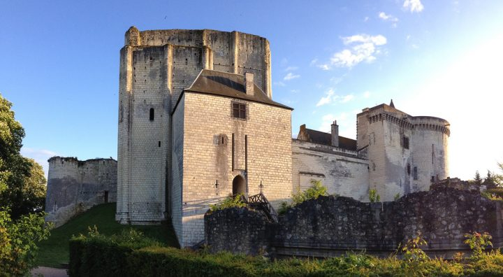 photo credit: Château de Loches via photopin (license)