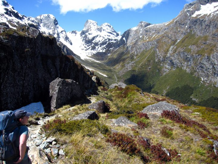 photo credit: Routeburn Track via photopin (license)