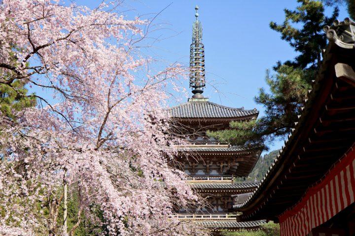 photo credit: Daigoji Temple via photopin (license)