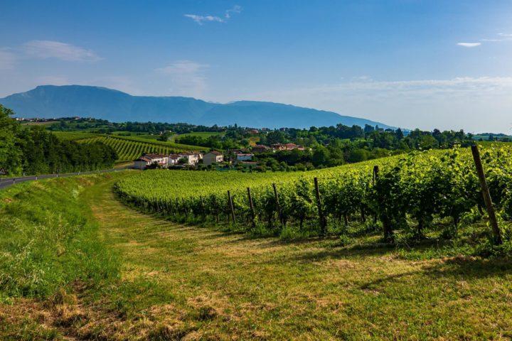 【世界遺産】コネリアーノとヴァルドッビアーデネのプロセッコ栽培丘陵群