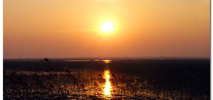 中国の黄海-渤海湾沿岸の渡り鳥保護区群(第1段階)